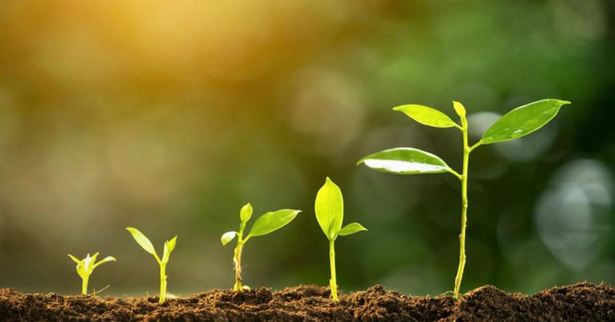 grow yourself marketing skills blog post